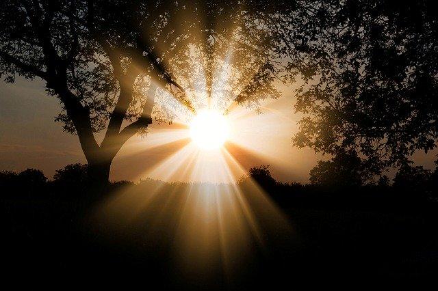 sun, dawn, nature